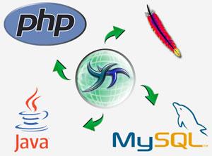 Web programlama php asp vb sunucu taraflı bir dil kullanılarak
